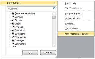 Excel - filtrowanie danych